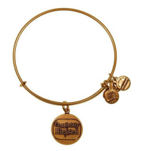 Alex and Ani Bangle/ Charms Bangle/ Fashion Jewelry (XBL13355)