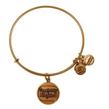 Alex e ani bracelete / pulseira encantos / jóia da forma (xbl13355)