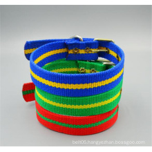 Double pin buckle 40mm colorful braided belt pet collar