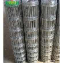 Field Fence (Farm Fence) Hot dipper galavnized wire