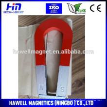 Horse shoe alnico educational magnet