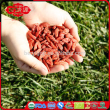 FDA registered USA organic goji berries wholesaler