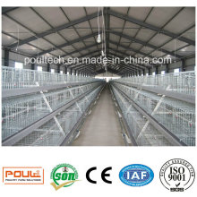 Layer/Broiler/Pullet Brooder Chicken Cage