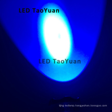 UV LED 365nm 3W Flashlight Uses
