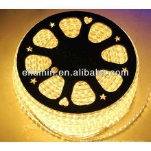 Tira conduzida flexível 5050/3528 da luz 220v
