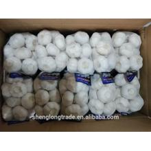 500g * 20bags de alho fresco