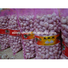 2014 new crop fresh pure white Garlic Peeld Garlic