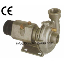 Stainless Steel Cummins Marine Diesels Engines Sea Water Pumps China