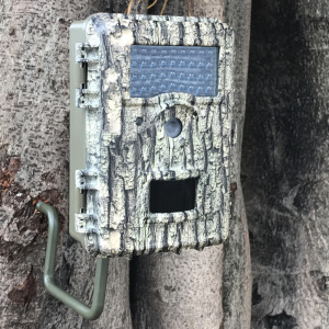 Pourvoirie 8MP Color Cost Effective HD Trail Camera