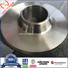 B381 GR2 Titanium flange as per Drawing