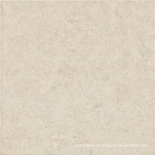 Gres Porcelain Polished Tile