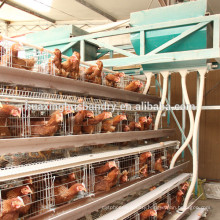 Chicken layer coop for poultry farm