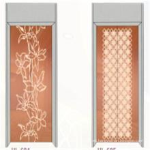 Fjzy-Elevator (FJ8000-1) Elevador Pasajero Fjzy-236