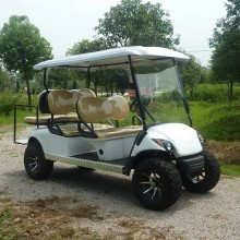 Gas Golf Cart mit Off Road Reifen