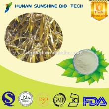 Лучшая цена Hizikia fusiforme П. е. 20% полисахаридов