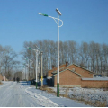 2014 alibaba hot selling 150w solar wind led street lights