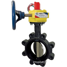 """Nibco LC20000 2"""" Cast Iron Butterfly Valve"""