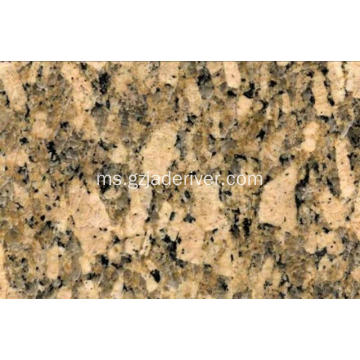 Golden Warna Batu Giallo Fiorito Granite