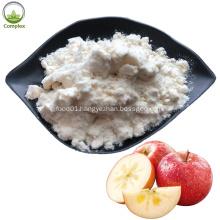 Hot Sale Natural Pure Green Apple Powder