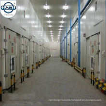 CACR-13 Newest Controlled Atmosphere Cold Storage Warehouse