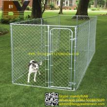 Chien de cage de chien d'animal familier courent le chenil