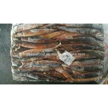 Свежезамороженный кальмар
