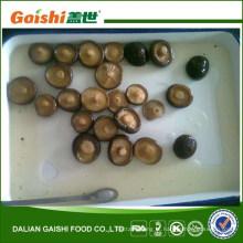 cogumelo shiitake enlatado / salgado em salmoura