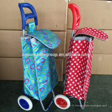 Steel hand carry trolley and travel trolley bag