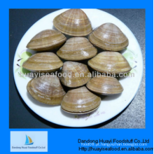 Frozen clean surf clam para venda