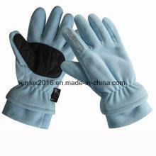 Fleece Winter Warm 3m Thinsulate Fashion Polar Fleece Outdoor Glove-Jg12A003