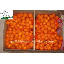 3.5-5.5cm Baby Mandarin сетчатый мешок упаковка