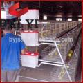 Une cage de conception Dtock Cages de poulet pour Kenya Hen Farm