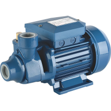 PM Series Peripheral Vortex Pump