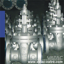 Cast Steel&Stainless Steel Cl150 Flanged R. F Gate Valve