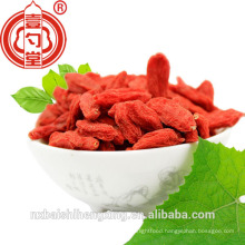 Dried Chinese Ningxia Dried Fruit Goji Berry Dried Fructus Lycii