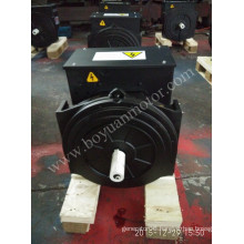 AC Brushless Synchronous Generator 164D 12kw