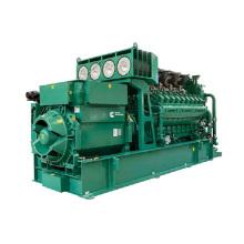 CNPC Erdgasgenerator
