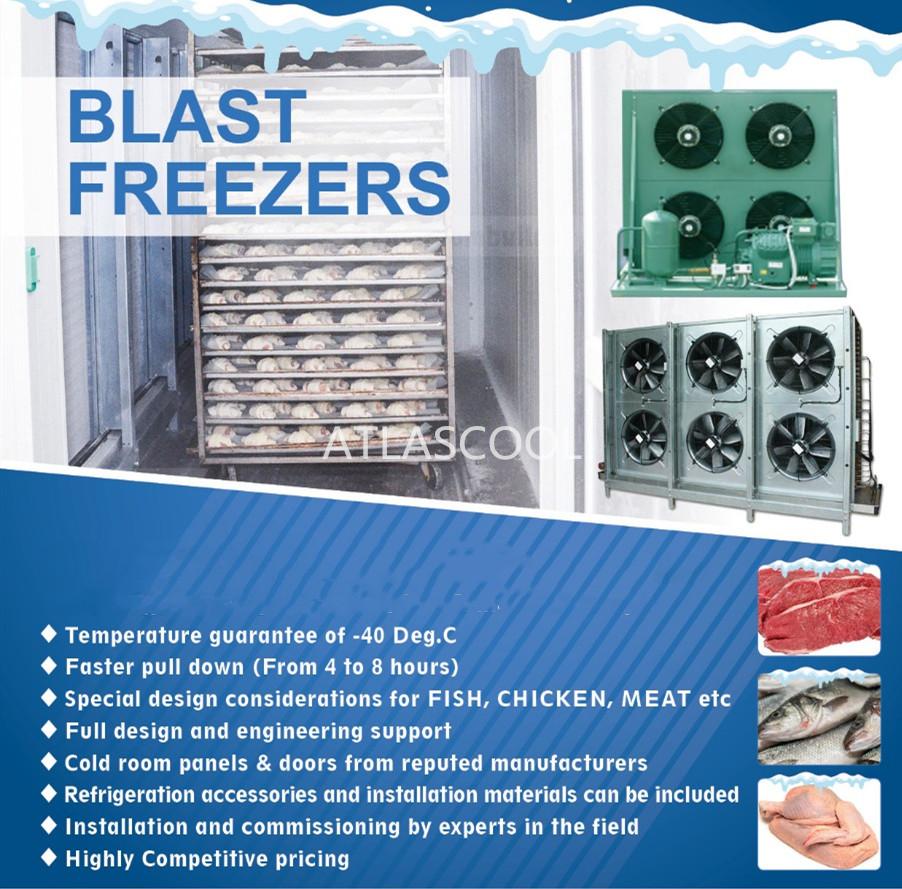 blast freezer cold room