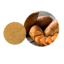 Hochwertiges Bio-Süßkartoffelpulver aus China