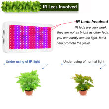 300W Plant LED Grow Light for Vegetables