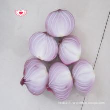 Oignon frais aux échalotes / Oignon rouge frais Vente chaude
