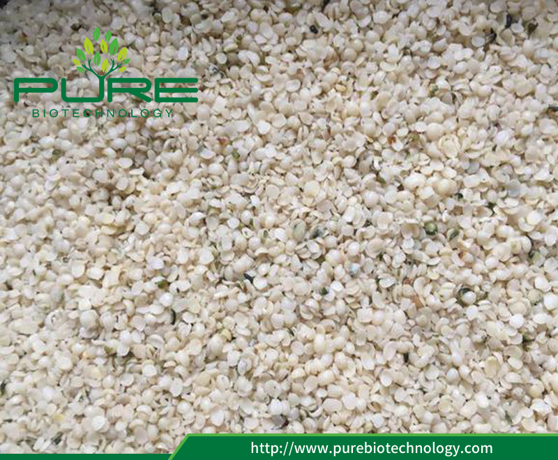 Top Quality Hemp Seed