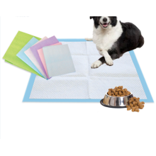 Absorbent Pet Pad Puppy Training Pad
