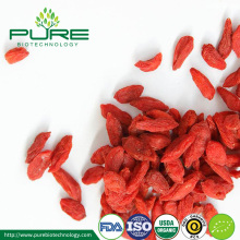 Organic Bio Goji Berry Fruit Dried fructus lycii