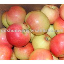 Классное гала-яблоко