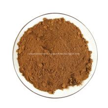 Rhizoma Polygonati Raw Material Powder