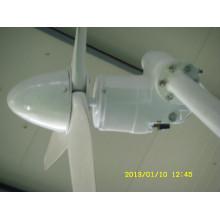 générateur de puissance de vent 300W sur le prix bas sur le toit