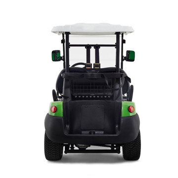 Popular garden noble 2 seater 48V cheap mini electric golf cart