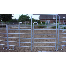 Hot DIP Galvanized Ranch Fence for Horse