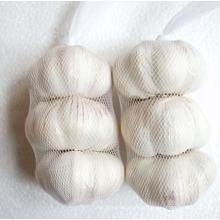 New Crop Chiese Gute Qualität Normaler weißer Knoblauch